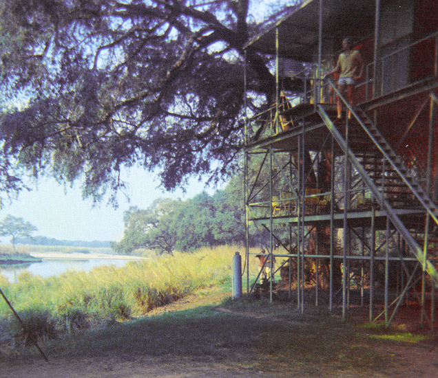 An image of  an open-sided, three-storey building constructed of poles which was the old tree lodge at Mana Pools. Set in the riverine forest next to the deep pools of the Mana floodplain
