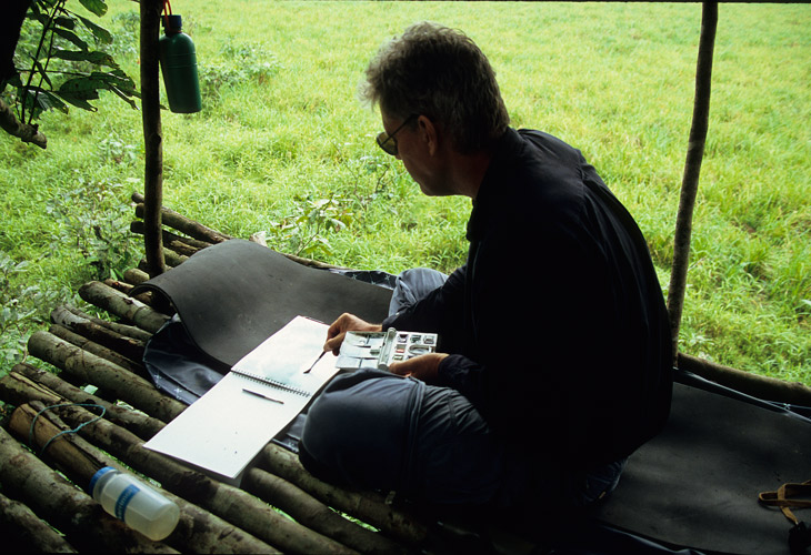 An image of  the artist, Paul Augustinus making a sketch on a platform overlooking a wide clearing in the rainforest