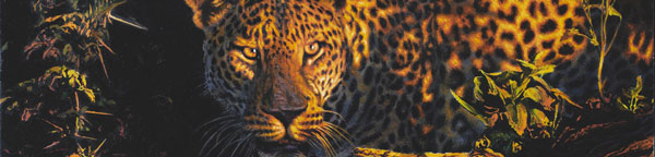 Paul Augustinus painting of a leopard portrait - late evening glow.