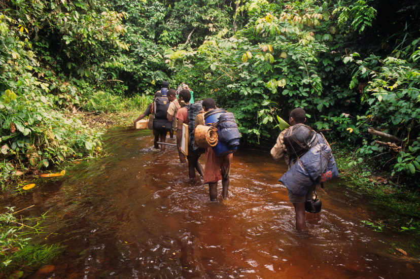An image of  a group of porters carrying camping and painting gear along a shallow stream flanked by the trees of the rainforest.